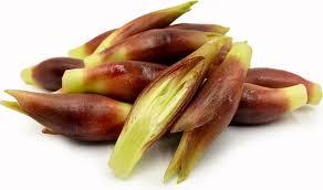 verduras asiáticas myoga
